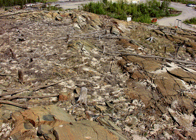 Esso area in 2002  with crushed limestone on the rocky and barren ground