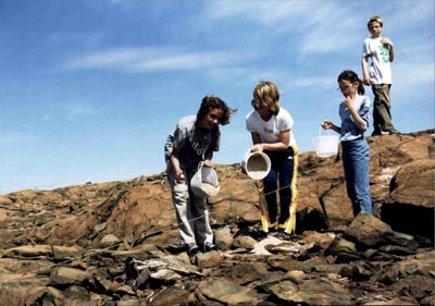Knight 1 area in 2000 with four students spreading crushed limestone on the rocky and barren ground
